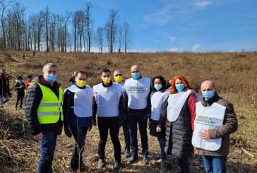 """Deputatul Florin Alexe, prezent la acțiunea de împădurire: """"Grija pentru mediu este o prioritate pentru echipa liberală"""""""