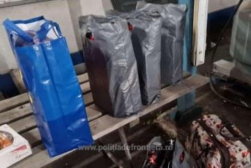 SIGHET – Femeie amendată cu 10.000 de lei