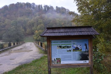 URBANIZARE- Vilele și cabanele care se construiesc amenință Aria Protejată Cheile Lăpușului