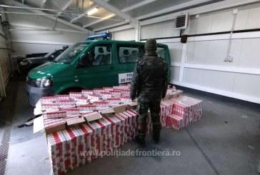 ACȚIUNE CONTROL – Țigări de contrabandă depistate într-un garaj