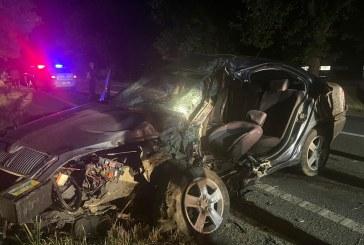 ASEARĂ – A intrat cu mașina într-un copac la Cicârlău (FOTO)