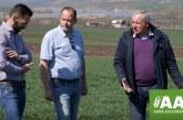 Fermierii români aleg să-și protejeze munca și optează pentru asigurările agricole. Studiu de caz: Ing. Dorel Istrate, Istrate Prodserv SRL, Șăulia