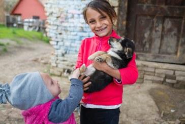 HHC: 8 copii și o mamă văduvă dintr-un sat din Sibiu au nevoie de sprijin pentru a putea avea propria casă