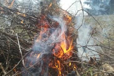 VALEA USTUROIULUI – Incendiu de vegetație izbucnit de la o cabană de lemn distrusă de foc
