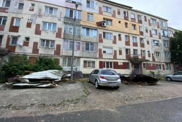 BAIA MARE – Copac căzut peste o persoană, mașină distrusă de un acoperiș de bloc