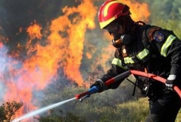 GRECIA – Pompierii români sunt văzuți ca niște extratereștri