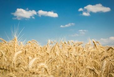 Agra Asigurări lansează noi avantaje pentru fermieri la produsele de asigurare din 2021