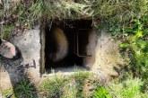 UN NEAMȚ A SUNAT LA 112 – Berbec salvat de polițiștii din Ocna Șugatag
