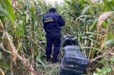 REMEȚI – Țigări de contrabandă depistate în lanul de porumb