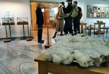 Muzeul de Mineralogie Baia Mare, vizitat de o echipă a televiziunii naționale din Danemarca