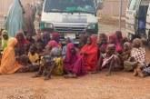"""În Nigeria, peste 12 milioane de copii """"se tem să meargă la şcoală"""", potrivit preşedintelui ţării"""