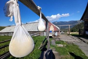 AFACERE DE FAMILIE – Mâncăruri ciobănești tradiționale pe traseul către Cascada Cailor din Borșa